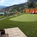 backyard synthetic turf green