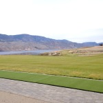 Synthetic Turf Artificial Grass & Lawns Tobiano