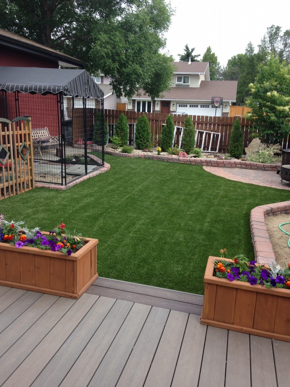 Regina-backyard-turf3
