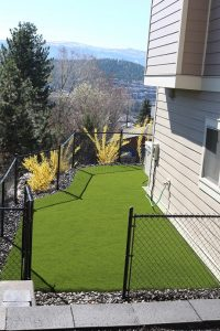 New Pet Friendly Synthetic Turf Backyard in Kelowna, BC