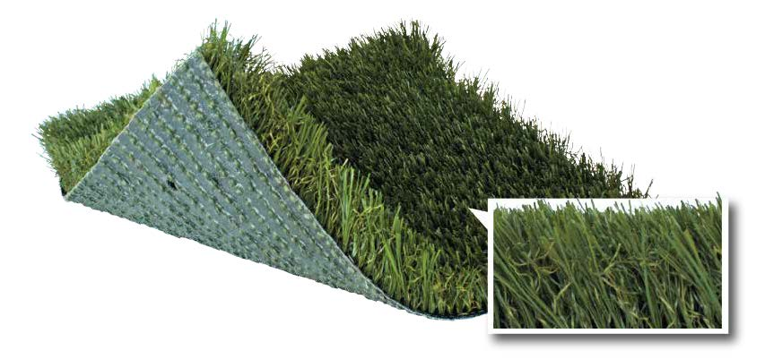 CX134 SoftLawn Kentucky Blue Plus