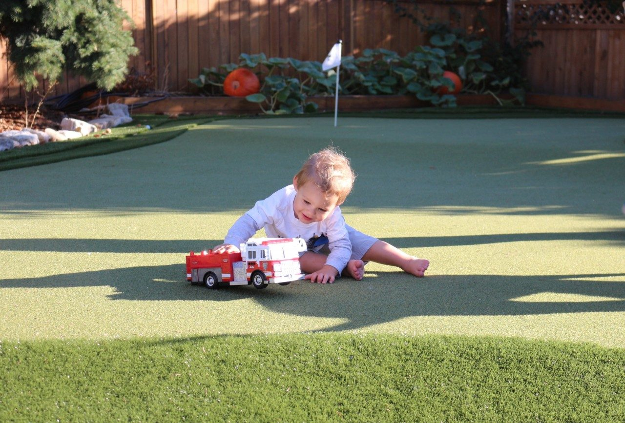 Read more on Artificial Turf: Can Our Kids and Pets Play Safely?