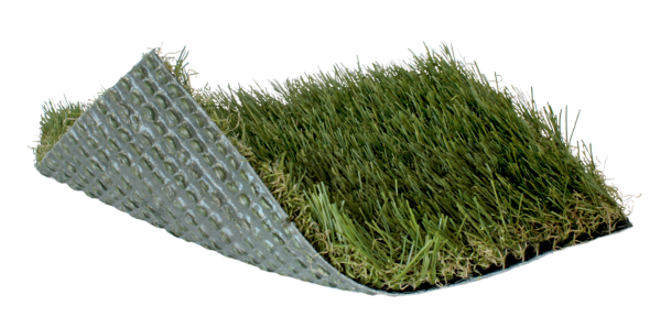 Artificial Grass & Turf | Synthetic Turf International | SoftLawn Select Fescue Product