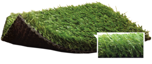 Artificial Grass & Turf | Synthetic Turf International | SoftLawn Bluegrass Blend Product