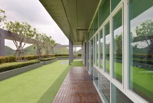 Enhance Your Rooftop with Synthetic Turf