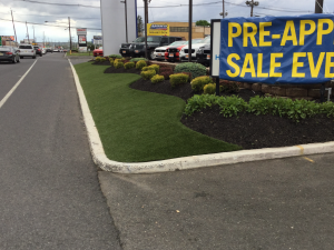 Synthetic Turf Boulevards Beautifying City Streets