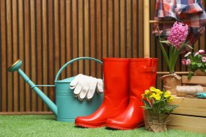 Protected: How to Clean Artificial Grass For Dogs